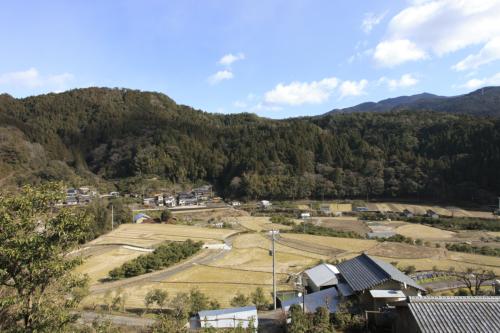 馬路村 田畑の風景