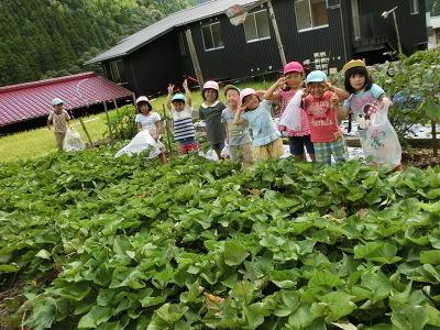 馬路保育所 園庭で遊ぶ子どもたち